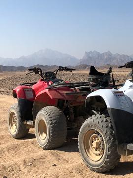 quad safari1